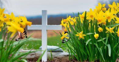 Célébrations eucharistiques en mémoire de nos défuns